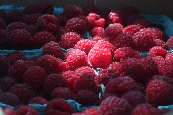 what's in the bag-less fruit share?